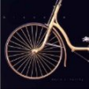 "Book:  ""Bicycle: The History"" By David V. Herlihy"