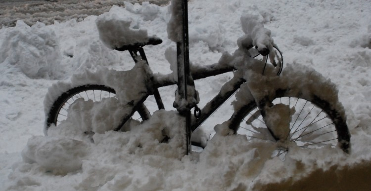 Snow Covered Bicycle DSC_0168