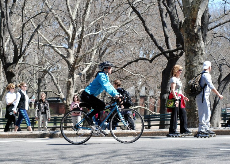 15 Minutes In Central Park  April 5th 2009 (2)